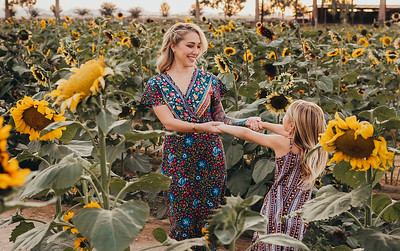 Sunflower- SunshynePIx-6145