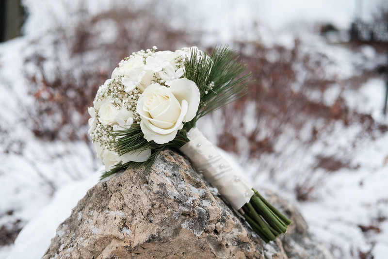 Patty & Bill's snowy Eagle Ridge - Galena Wedding
