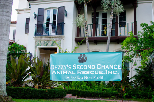Dezzy 's Second Chance
