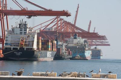 Salalah port (10)