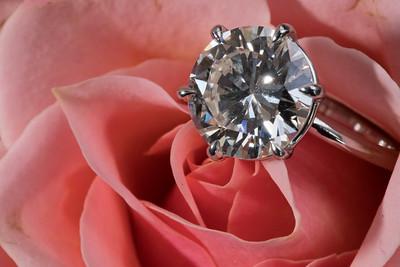Engagement -01277