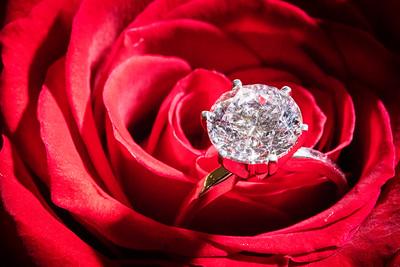 Engagement -09224