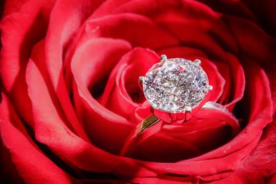 Engagement -09224-26
