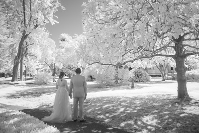 Wedding -08739
