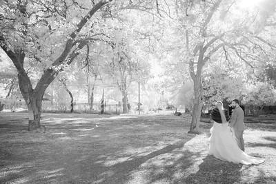 Wedding -08898