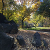 Central Park-1009