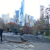 Central Park-1015