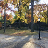 Central Park-1013