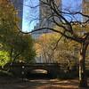 Central Park-1007