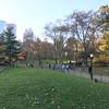 Central Park-1017