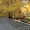 Central Park-1005