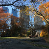 Central Park-1003