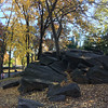 Central Park-1008