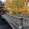 Central Park-1004
