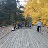 Central Park-1006
