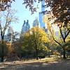 Central Park-1011