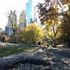Central Park-1012