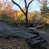 Central Park-1014