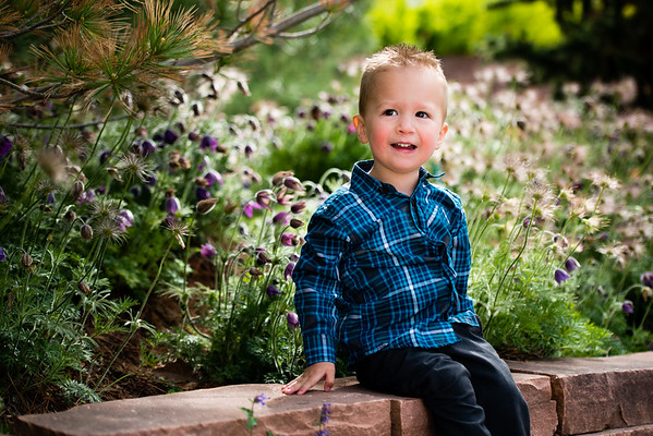red_butte_garden_hodges_family-807049
