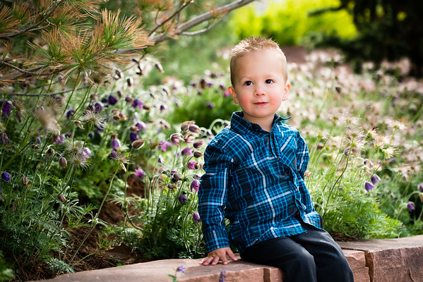 red_butte_garden_hodges_family-807062