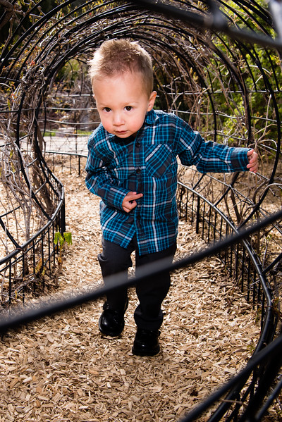red_butte_garden_hodges_family-818643