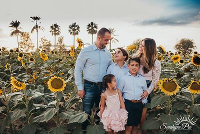Sunflower- SunshynePIx-5758