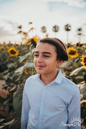 Sunflower- SunshynePIx-5699