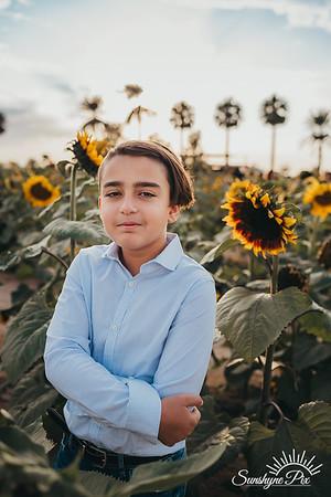 Sunflower- SunshynePIx-5709