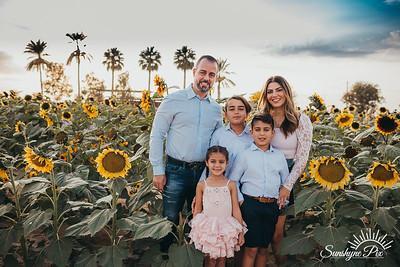 Sunflower- SunshynePIx-5754