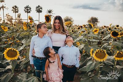 Sunflower- SunshynePIx-5786