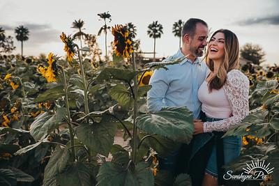 Sunflower- SunshynePIx-5745