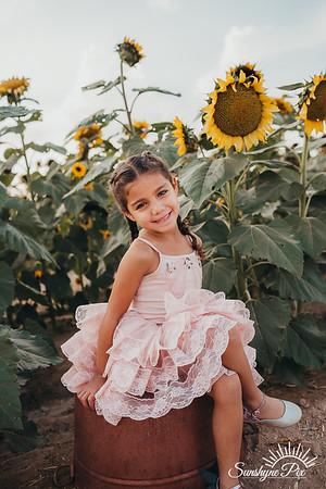 Sunflower- SunshynePIx-5678