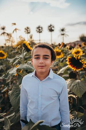Sunflower- SunshynePIx-5694
