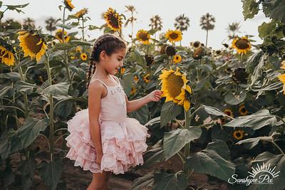 Sunflower- SunshynePIx-5689
