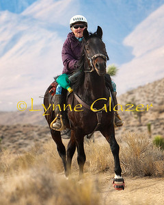 Cheri Briscoe and 3000+ mile stallion Thunder's Echo, son of the Hall of Fame horse DR Thunder Bask.  They finished third in the Jim Jones stallion mileage championship in 2011. DVE Warmup 2012.  Jim Jones winner for 2012!