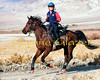 High mileage rider Karen Chaton and Pro Bono on the third day at the Death Valley ride.  She has over 30,000 miles, and did 3600 miles in 2011 to win the national mileage championship with Bo and her decade horse Granite Chief.