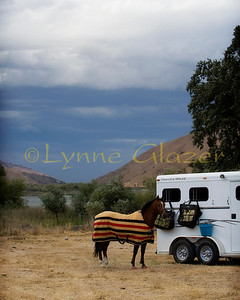 Many forms of containment are in use at rides, and many still tie to the trailer. Castac Lake in the background at the first Tejon Ranch ride.