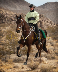 Carlos Siderman and his American Saddlebred at the 2012 Death Valley Warmup. Carlos and Lisa Siderman have several ASBs, and it's fun to watch their various gaits.