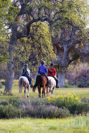 Riders begin the first day at the Cuyama Oaks XP, a three day Central California ride on private land that fills up every year.