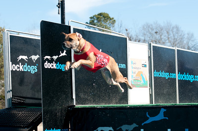 dockdogs_washington nc_262