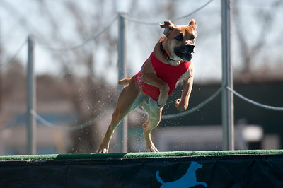 dockdogs_washington nc_309