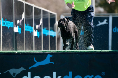 dockdogs_washington nc_219