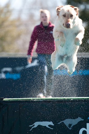 dockdogs_washington nc_216