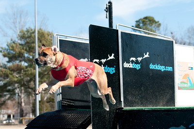 dockdogs_washington nc_263