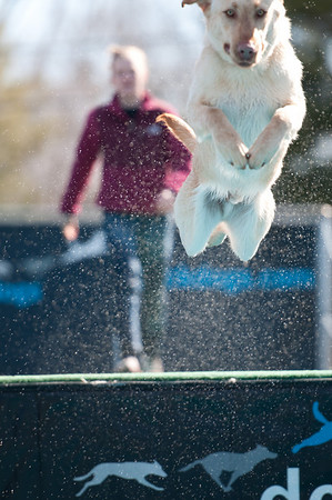 dockdogs_washington nc_217