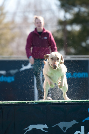 dockdogs_washington nc_213