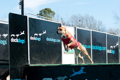 dockdogs_washington nc_261