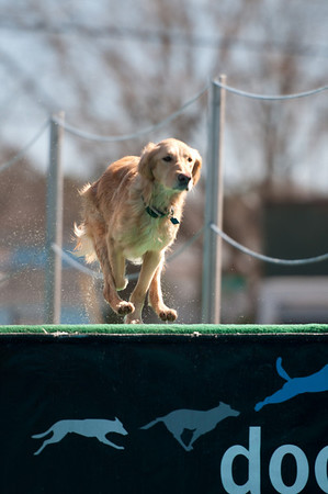 dockdogs_washington nc_357