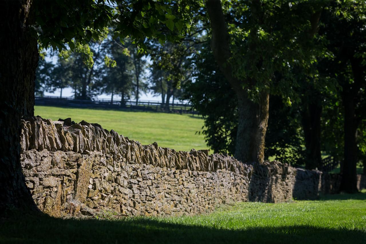 Don Alberto Farm scenics from 8.12.15.