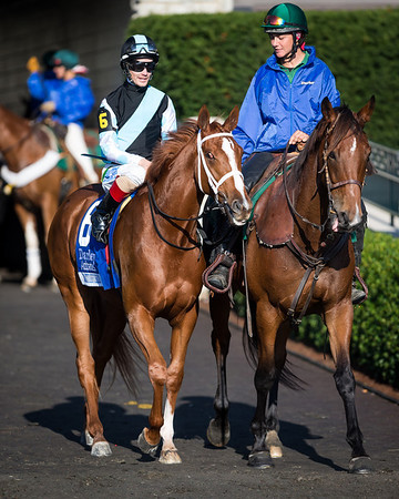 Battlefield Angel at Keeneland for the Alcibiades 10.04.13.